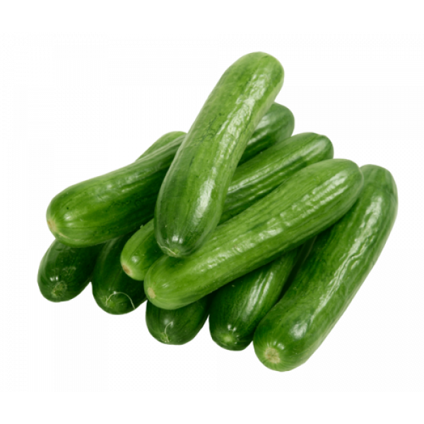 Fresh CUCUMBER $/EACH