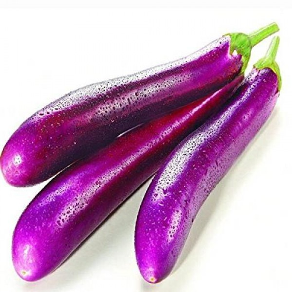 Fresh LONG EGG PLANT $/Lb