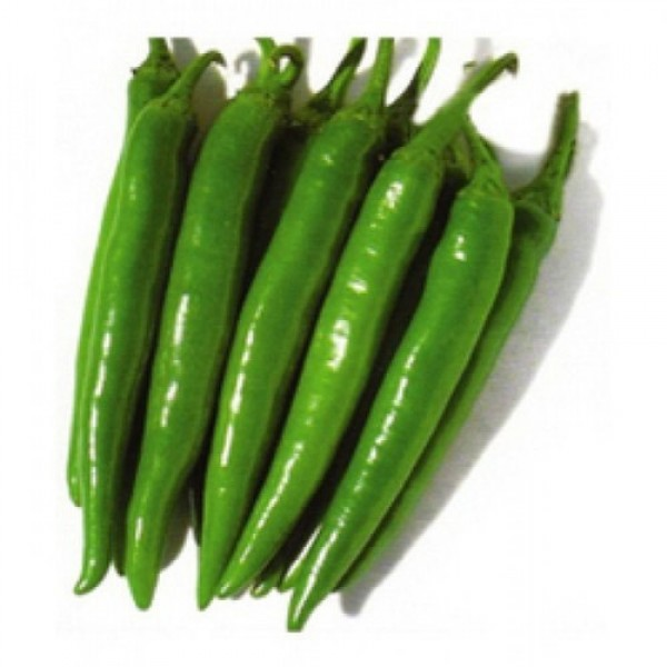 Fresh GREEN CHILLI - Medium $/Lb
