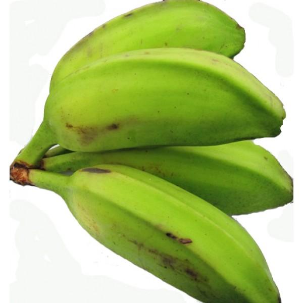 Fresh GREEN RULO BANANA $/Lb
