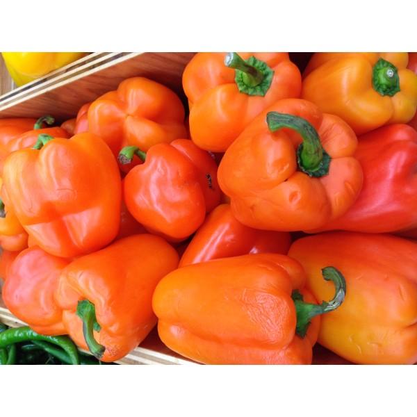 Fresh ORANGE PEPPER $/Lb