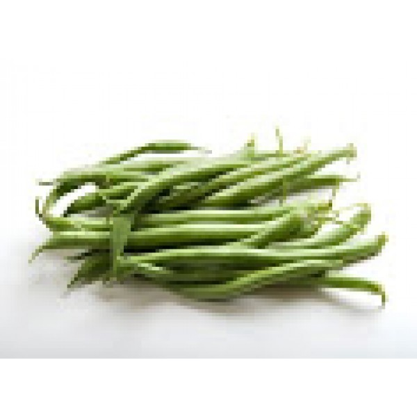Fresh STRING BEANS $/Lb