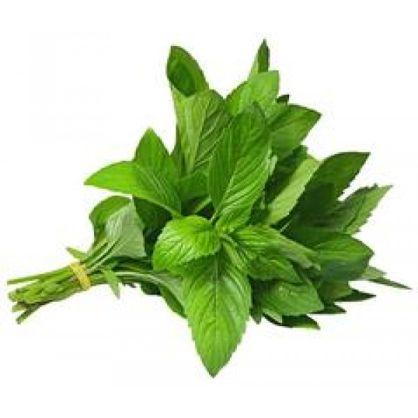 Fresh MINT LEAVES $/Each