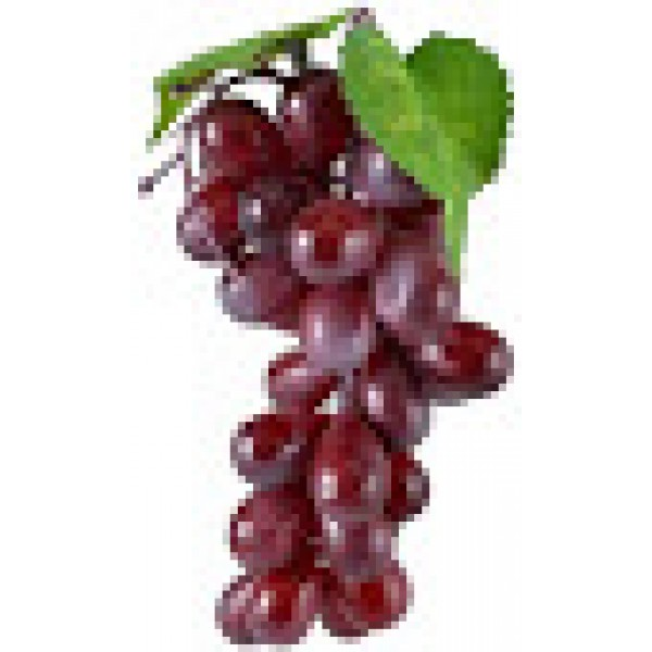 Fresh RED GRAPES $/Lb