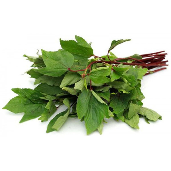 Fresh Gongura Leaves $/lb